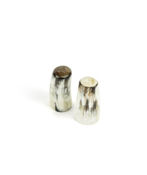 Salt and pepper shaker in blond horn