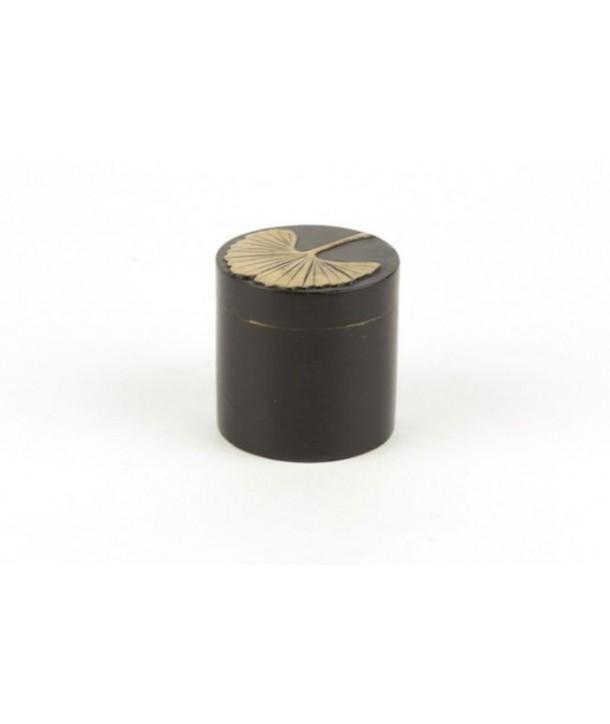 Boîte pilule gingko en pierre fond noir